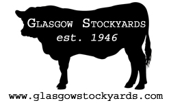Glasgow Stockyards
